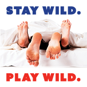 Stay Wild. Play Wild. Graphic